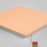 Plywood 1220 x 2440 x 9mm #CraftedForLife