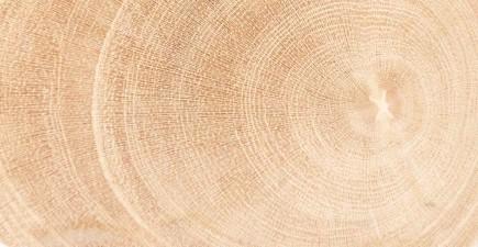 Wood Hardness - Janka Chart